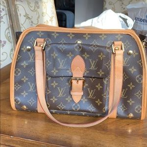 Louis Vuitton bag / small dog carrier
